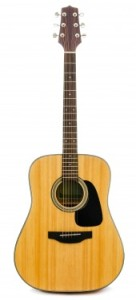 traditional acoustic guitar